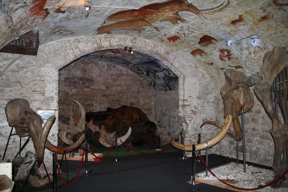 Zimmer Mammut Museum