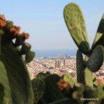 Blick aus der Búnker del Carmel