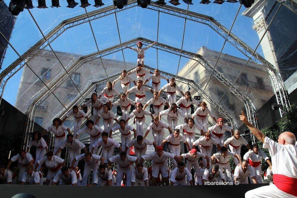 Falcons Barcelona