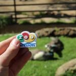 Magnet Zoo Barcelona