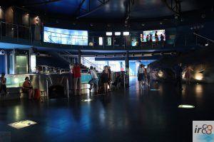 Aquarium von Barcelona
