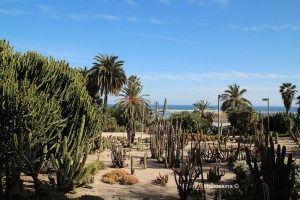 Jardins Mossèn Costa i Llobera (Gärten)