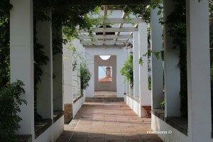 Jardins Teatre Grec
