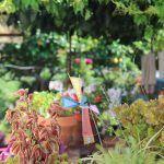 Garten Carrer d'Aiguafreda