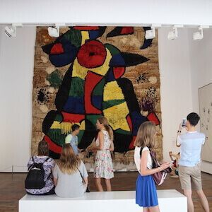 Tickets Fundació Joan Miró